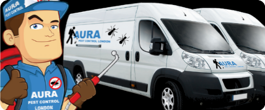 Aura Pest Control London